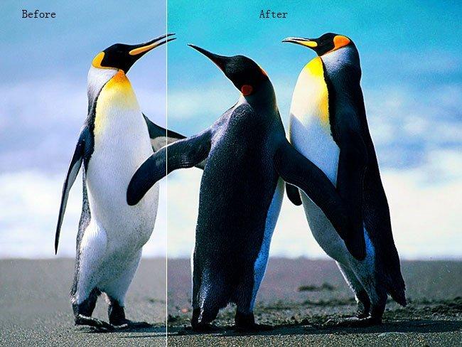 保存負效果照片