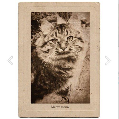 vintage-photo-effects-photofunia