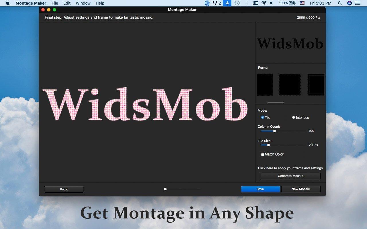 shape-montage