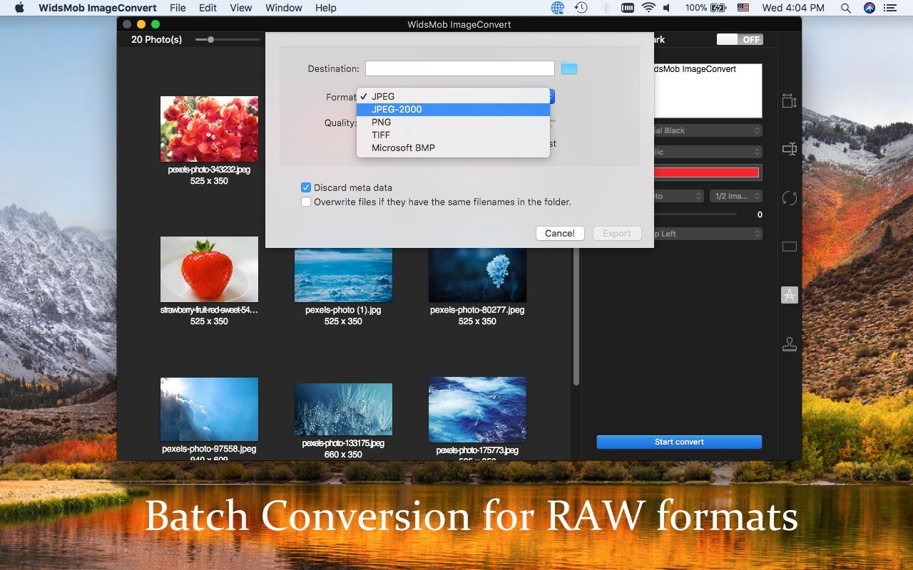 batch conversion