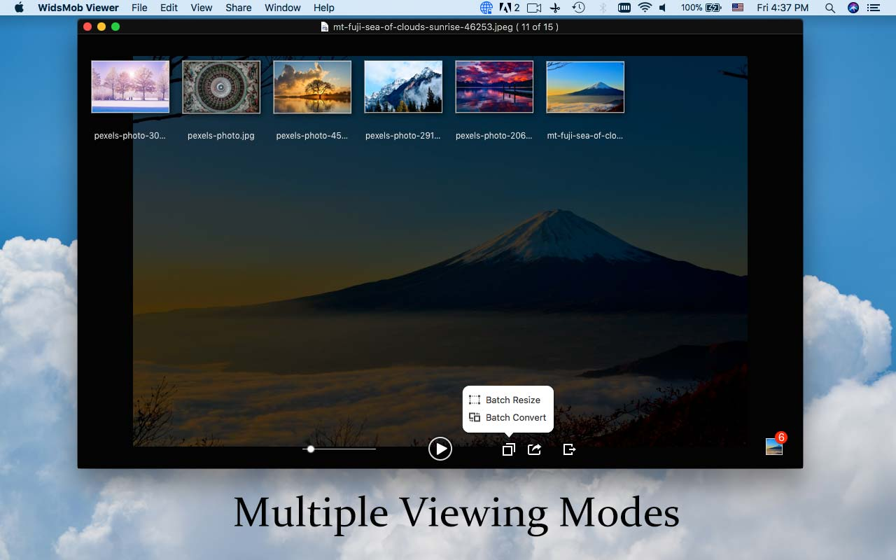 multiple-viewing-modes