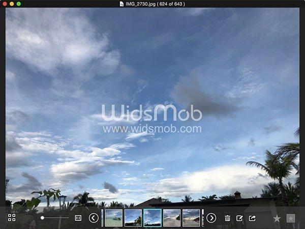 WidsMob Viewer Ekran Görüntüsü