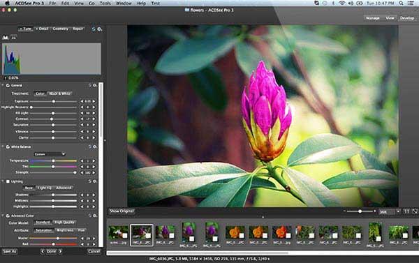 Afficher l'image sur Mac avec ACDSee