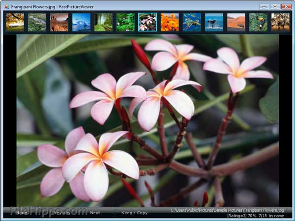 Visor de fotos para Windows - FastPictureViewer
