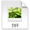 TIF, TIFF Viewer with Drive Icon