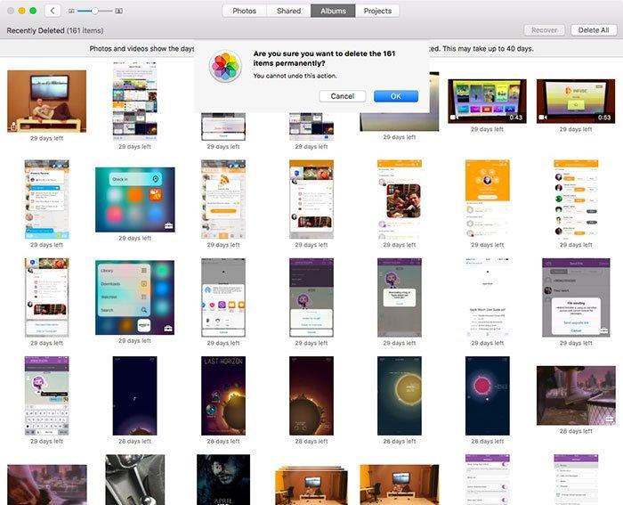 Albüm Macbook'undaki Fotoğrafları Sil