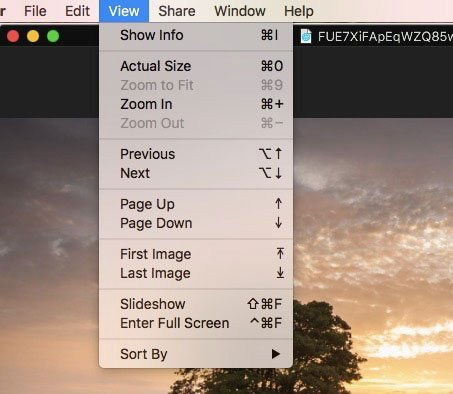 EXIF Mode Viewer