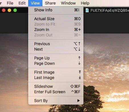 EXIF Modu Görüntüleyici