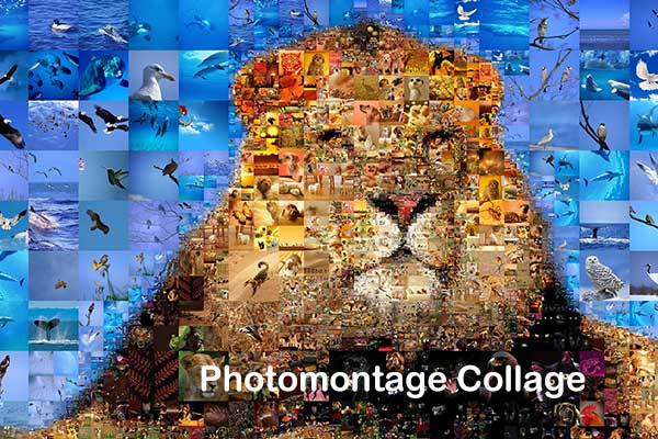Photomontage Collage
