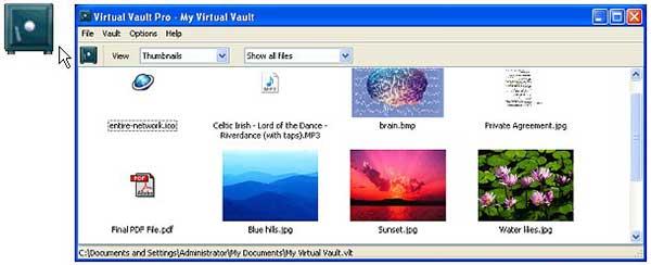 Capture d'écran de Virtual Vault Pro