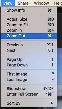 Zoom Photo on Viewer