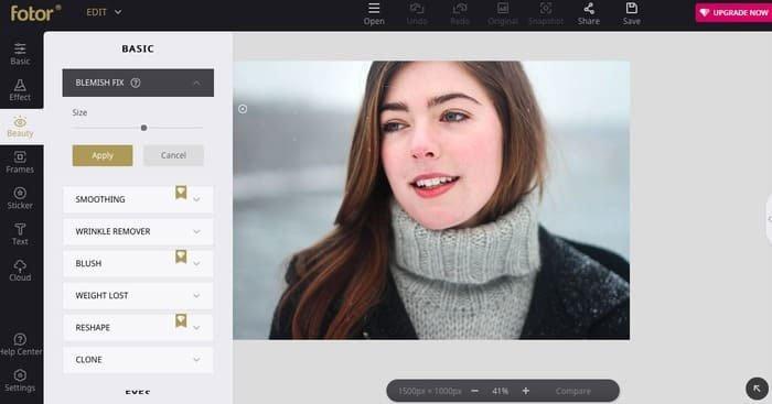 Fotor Online gezichtseditor