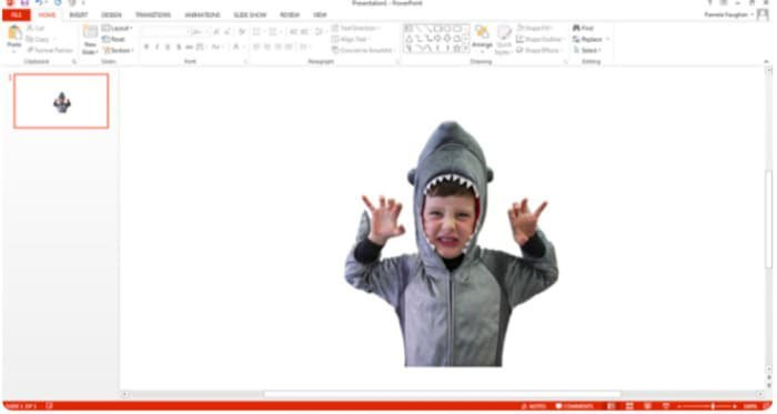 Enregistrer la photo au format PNG avec fond transparent