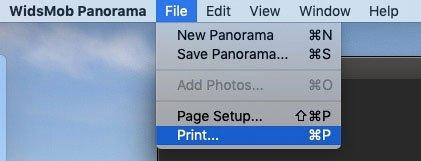 Imprimir panorama