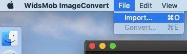 Импортировать фото в ImageConvert