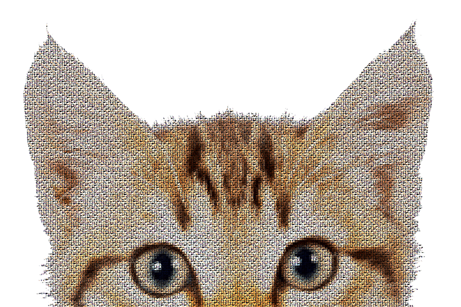 Kitty Photo Mosaic