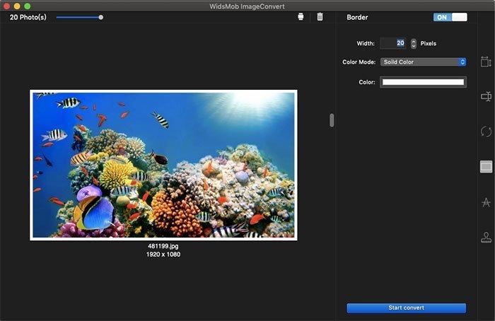 Solid Color Border ImageConvert