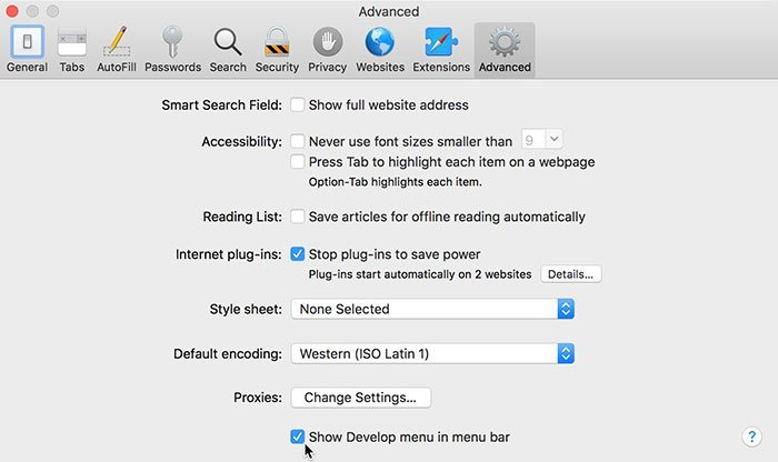 Safari Setting