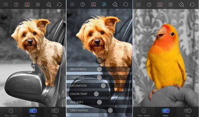 Captura de tela do Color Splash