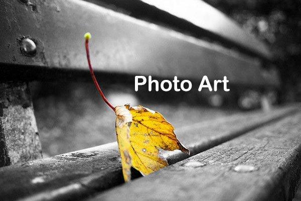 Photo Art Banner