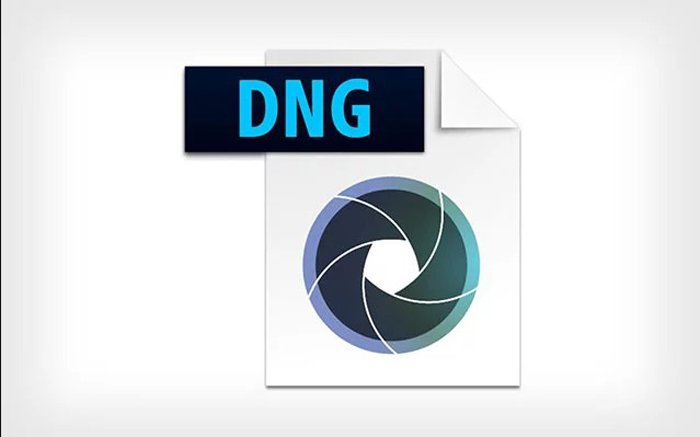 DNG-format