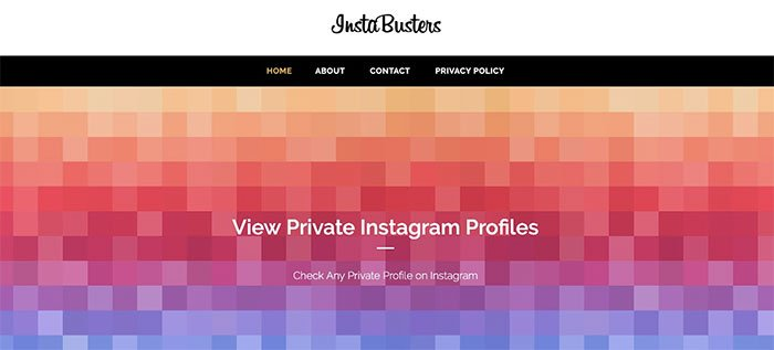 Se private Instagram-profiler med InstaBusters