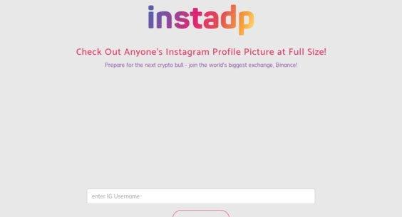 Instagram Photo Viewer - Instadp