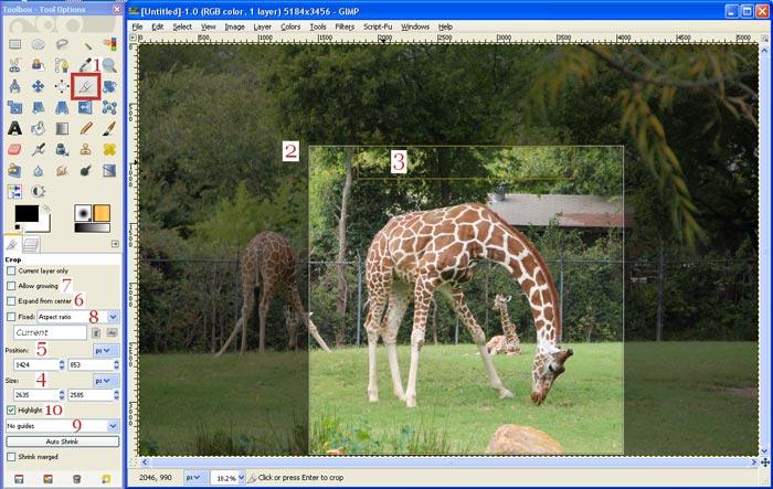 GIMP Kırpma Fotoğrafı