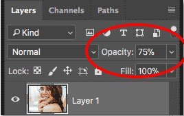 Layer Opacity