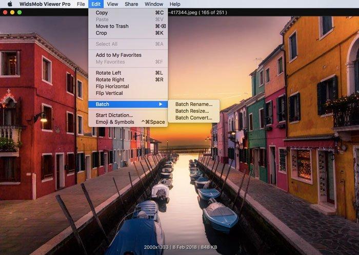Batch Process Viewer Pro