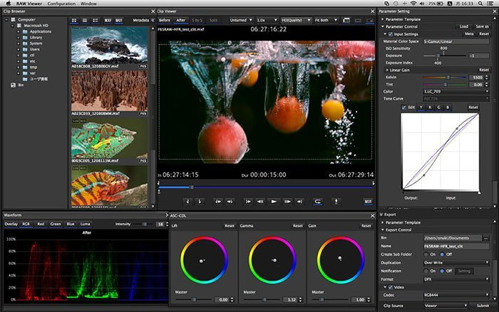 Sony Creative RAW Viewer