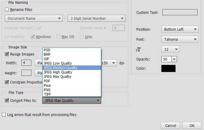 Konvertieren Sie DNG in JPG Photoshop Element