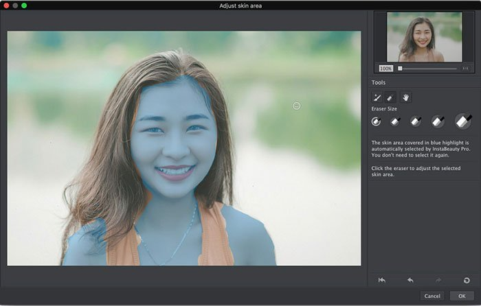 Vælg Skin Area Portrait Pro