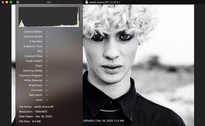 Tjek EXIF for TIFF i WidsMob Viewer Pro