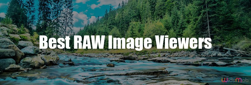Best RAW Image Viewers