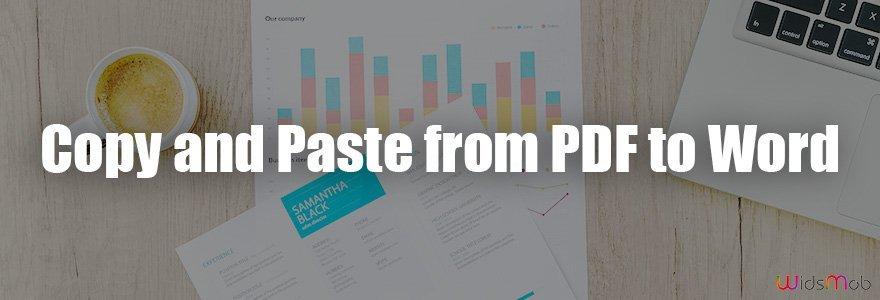 Kopier og indsæt fra PDF til Word