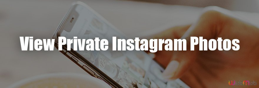 Visualizza le foto private di Instagram