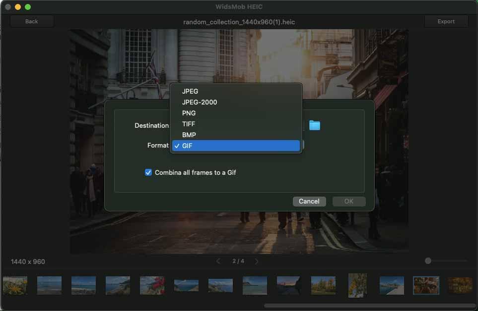 Velg Output Format Mac