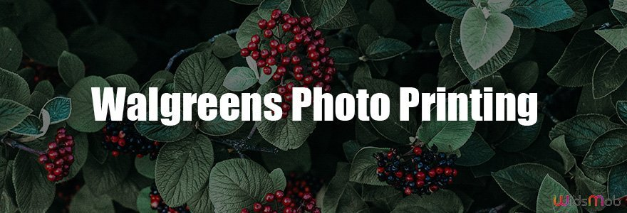 Impression photo Walgreens