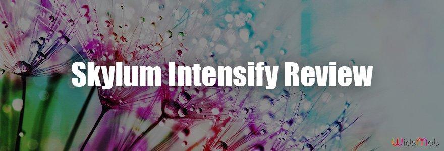 Skylum Intensify Review