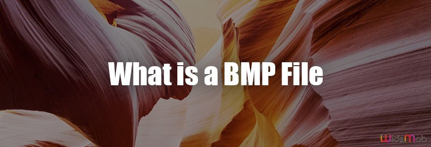 What Is A BMP File