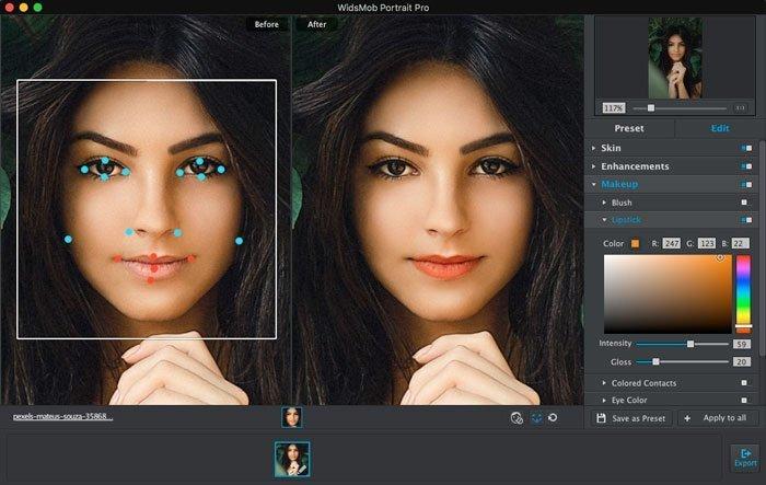 WidsMob Portret Pro