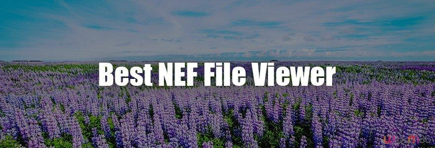 Meilleure visionneuse de fichiers NEF