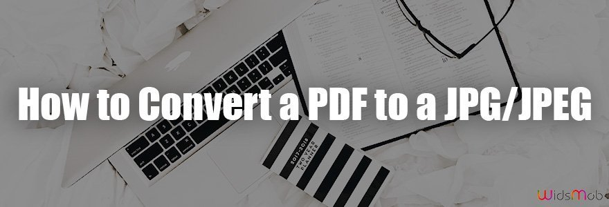 How to Convert a PDF to a JPG