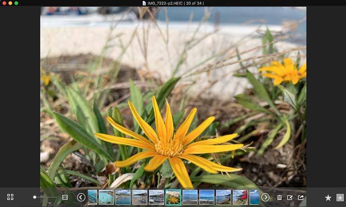 Bekijk HEIC Files Viewer Pro